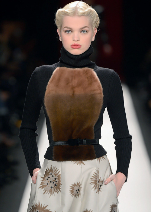 evoleur:   Daphne Groeneveld at Carolina Herrera Fall 2013.  Shitting on everyone