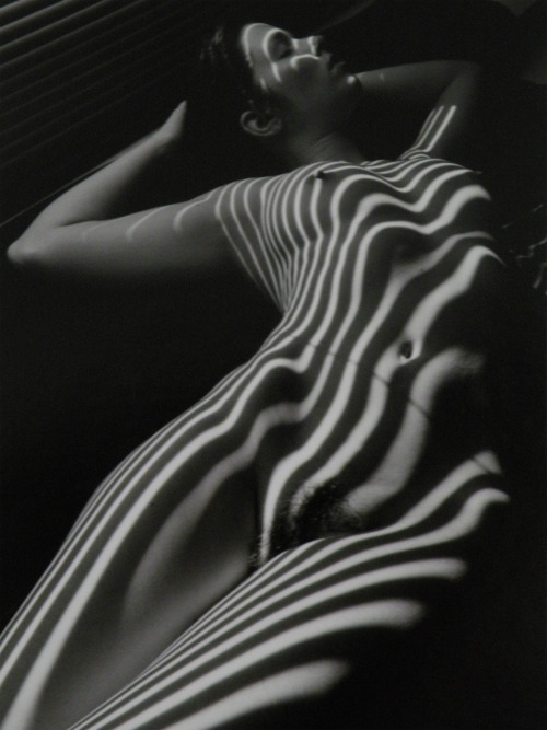 danishprinciple:  Lucien Clergue, Nu Zébré, New York, 1998