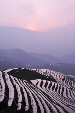 vurtual:  Terraced Rice Fields (by ohmytrip)