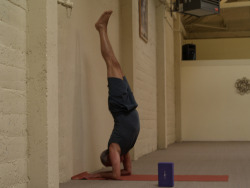 Larry Schultz does an Elbow stand - Pincha Mayurasana by Eric Broder Van Dyke on Flickr.