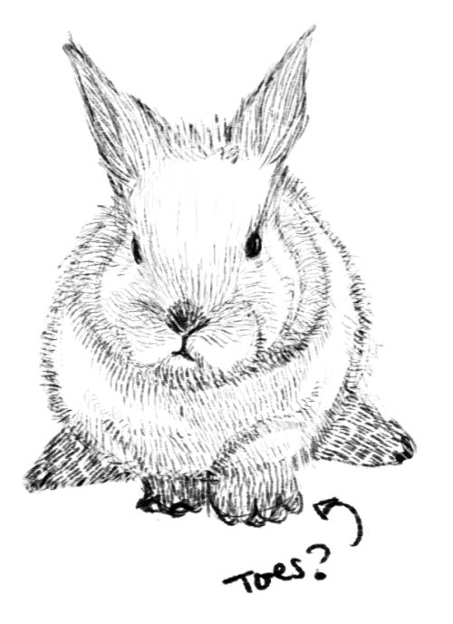 I drew a bunneh! :DEven though I am supposed to be working on my 7 day art challenge….