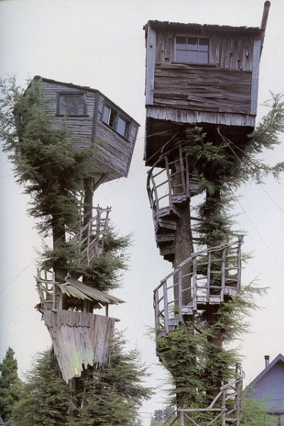 nonconcept:  Tree house by Old Chum.