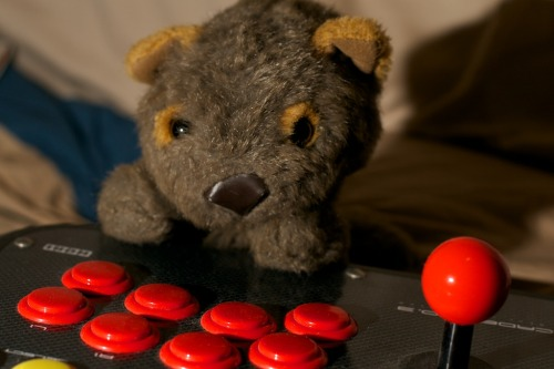 Mr Wombat likes to play video games.