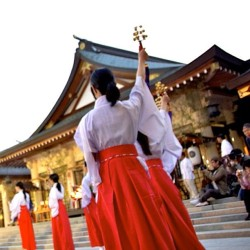 Over 100 shrine maidens dancing, taiko, kids sumo & kagura...