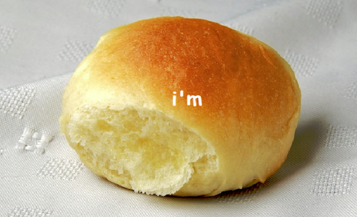 anna-b-summers:  dellycartwright:  dellycartwright:  im bread  IM ON A ROLL  im bread
