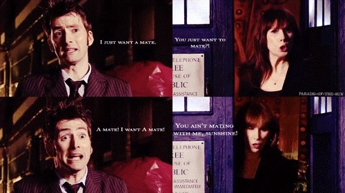madxmanxwithxaxblog:  Day 22: favorite friendship Ten and Donna