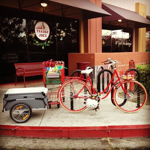 Where's my bike today? Loading up a trailer full of groceries at Trader Joe's.