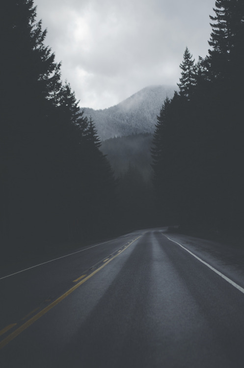 brutalgeneration:  Gone (by Ky Bouge)  The road not taken  is a whole life lost.