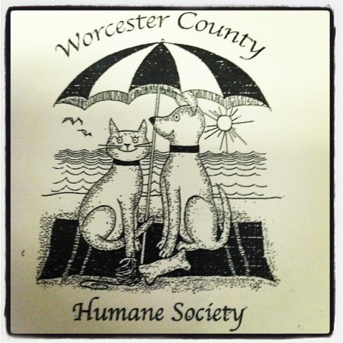 Bring your pets out to the boardwalk this Saturday for the Worcester County Humane Society annual walk-a-thon and help support local animal shelters! To register, visit: http://www.worcestercountyhumanesociety.com/