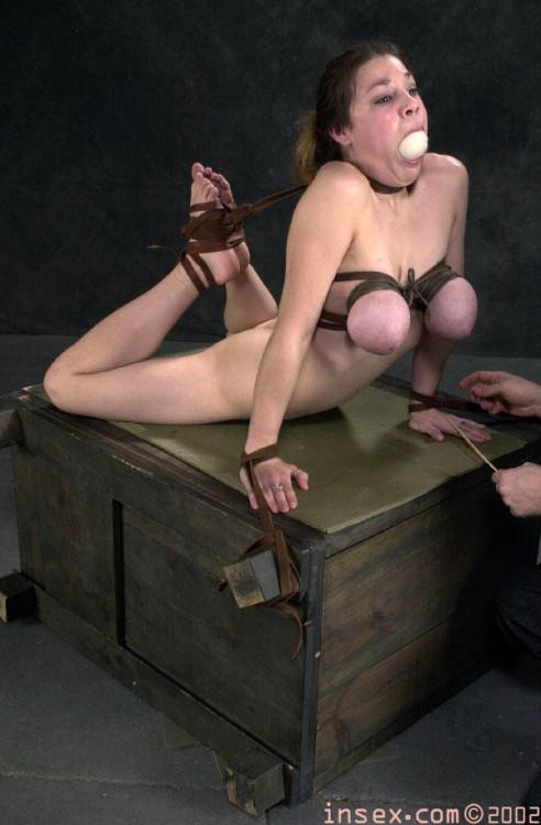 Mallory Knots