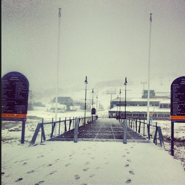Still snowing #perisher #snow #getreadypeople #openingweekendbringit #whiteout