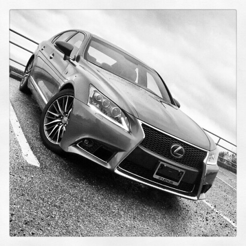 Lexus' L-Finesse design language: love it or hate it? #poll [2013 LS 460 F-Sport] (at Skyline Vista Point)