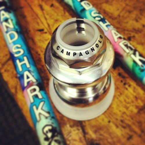 My #landshark gets a new #campagnolo headset. #bikeporn  (at Superb Bicycle)