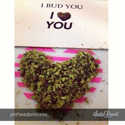Catch some #budlove and #blaze it up with #ibudyou in #amsterdam! #420 #april420 #high #hightimes #ibudyoumovement #ibudyougirls #weedheart #danks @potheadprincess_! Visit www.ibudyou.com for even more #budlove #worldwide!