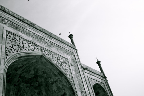 Taj Mahal, Part Five (by moi moi nz)
