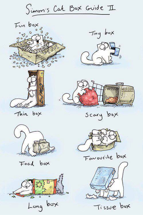 The Simon's Cat Guide to Boxes Salem and Minx wholeheartedly concur. ——-  thefrogman:  Simon's Cat's Box Guide No. II by Simon Tofield [website | twitter]