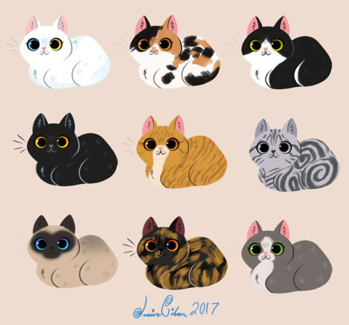 Kitty cat sticker tumblr