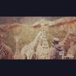 anisakim:  Have so mean of lol. Giraffe meet giraffe. #RunningMan #Eps141 #LeeKwangSoo #백신.