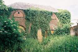 21vines:  South Brink, Wisbech, England, derelict stable (by buildings fan)
