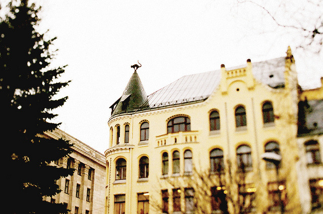 | ♕ |  Cat on a cold tin roof - Riga, Latvia  | by © pruginko