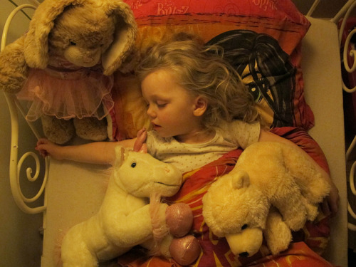 416. She may prefer to sleep with friends. Make sure they're soft. (photo: r.@.n.d.i.)