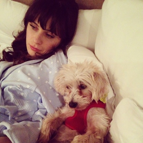 zooeydeschanel:  Just relaxing…