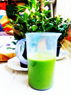 Preparing my pre & post workout smoothie Recipe for 2 smoothies I ripe avocadojuice from 2 orangesjuice from half a lemon2 large handfuls of spinach5cm piece of cucumber10-15 cubes of iceabout 1 small glass of water depending on how thick you want it + chlorellawheat grassbarley grassvitamin dpea protein