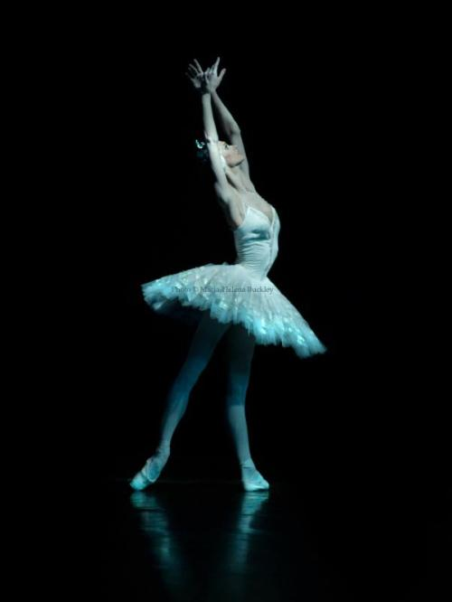 jrusevich:  Polina Semionova as Odette Photo: M.-H. Buckley