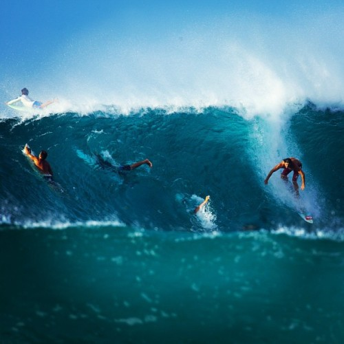 coldwatersouls:  reef mcintosh