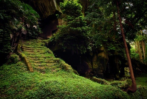 Mossy Stairs, Matsushima, Japan photo via gail