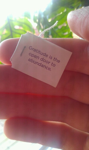 "decarnatedetachment:  Morning tea  ""Gratitude is the open door to abundance."""