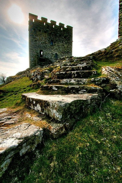 wildeyedsoutherncelt:  Dolwyddelan Castle, Wales by PhotoToasty