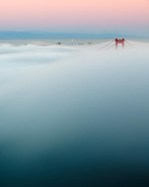 somethingvain: the bridge in the fog, san francisco's golden gate bridge by paul pratt