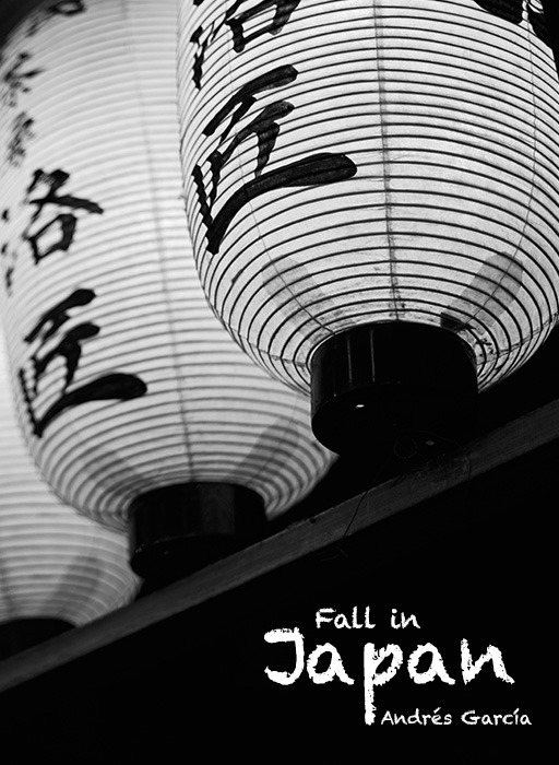 Fall in Japan, a photography magazine