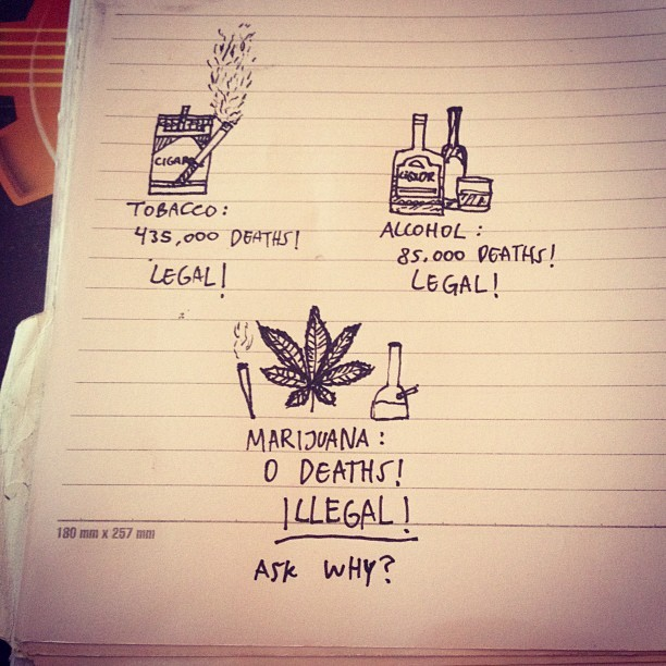 Ask why? #marijuana #420 #legalizemarijuana #tobacco #alcohol #askwhy #stoner @stonerpride