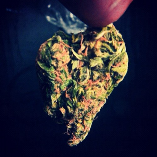 Heart shaped nuggets from my love. #stonerlove #lifeofaspoiledpotheadgirlfriend