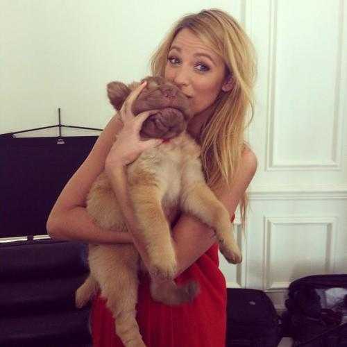 lovingblakelively:  how cute!