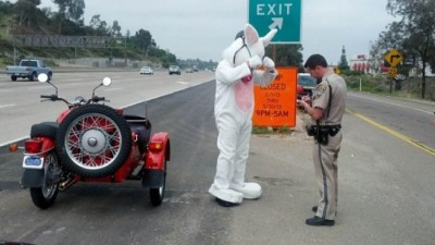 GUYS! The easter bunny got pulled over on his motorcycle today in Calfornia today for not wearing a helmet. I wonder if anyone told him he should protect the most important egg of them all? (Read the full story on CBS.) Happy Easter, everyone! (Or Zombie Jesus day, whatever.)