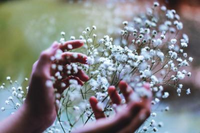floralls:  (by Xin Lí)