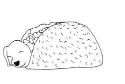 Have a doodle of a puppy in a taco. Because last night I dreamt I was posting them through peoples letterboxes.  Puppy taco present.
