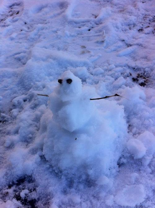 My first snowman! I've lived in florida all my life so I've never seen snow till now. And I made a fucking snowman. Hell yes!