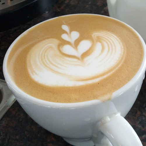 #Tulip #latteart (at The Daily Coffee)