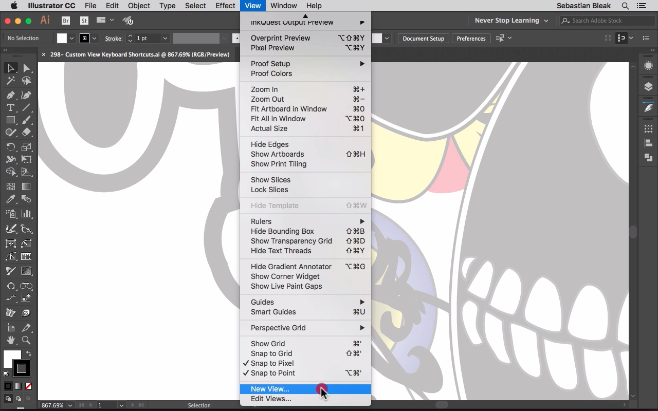 New View in Adobe Illustrator