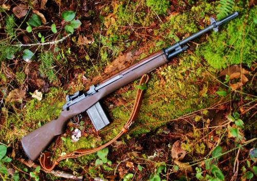 "M1A The civilian model of the M14, this M1A has a stock with the selector switch cutout. You can buy a ""fake"" selector switch to install for that complete Vietnam-era look. I saw a standard Springfield Armor M1A at a Sports Authority when I went to see what kind of ammo was left. Employee had just brought it out to fill an empty spot on the gun rack and someone pointed to it and bought it."
