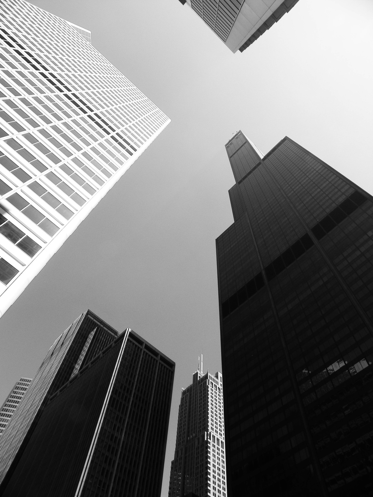 capturedbysam:  Willis Tower  #Skyscrapers