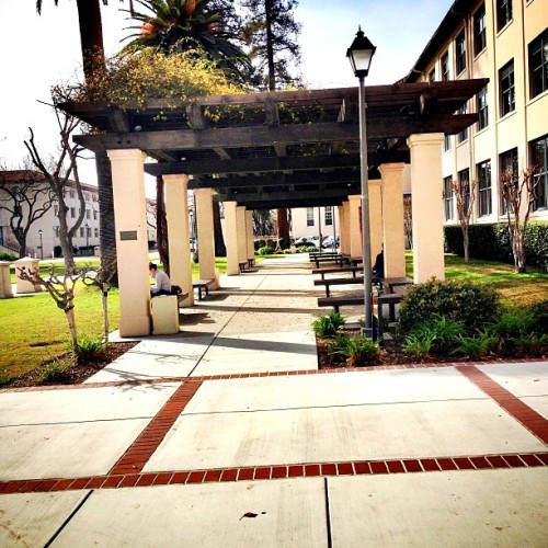 One of my favorite places to #study at #scu when the #sun is out. Love #california weather. #scusnapshot #blessed #college