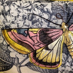 Botanical #print #butterfly #embroidered