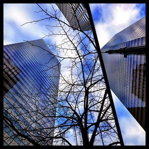 Splash of #blue! #seattle #igers_seattle #igers #attendible #city #buildings #urban #sky #architecture