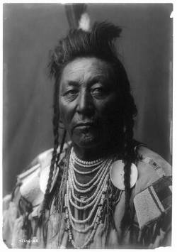 Plenty Coups  by Edward Curtis