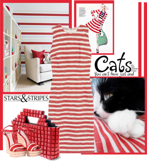 cats love stripes by bodangela featuring a jacquard dressDolce & Gabbana jacquard dress / Gucci cork wedge shoes, $700